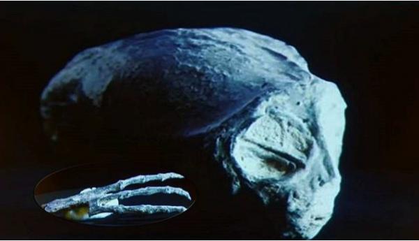 Ученые: Останки мумии из Перу принадлежат инопланетным рептилиям
