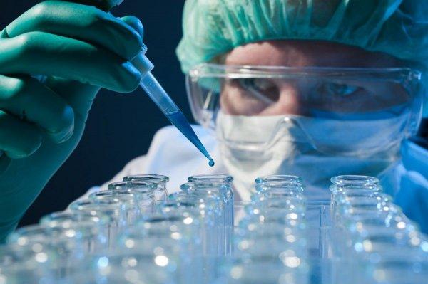Новосибирские ученые создают супрецепляющий материал