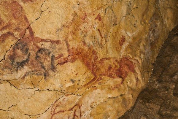 В Испании нашли наскальные рисунки возрастом до 30 000 лет