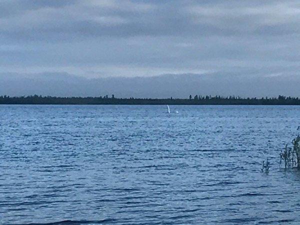 Ученые намерены восстановить озеро Ханто в ЯНАО