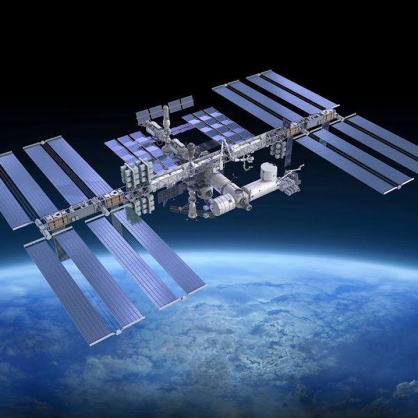 На МКС станут выращивать органы для космонавтов