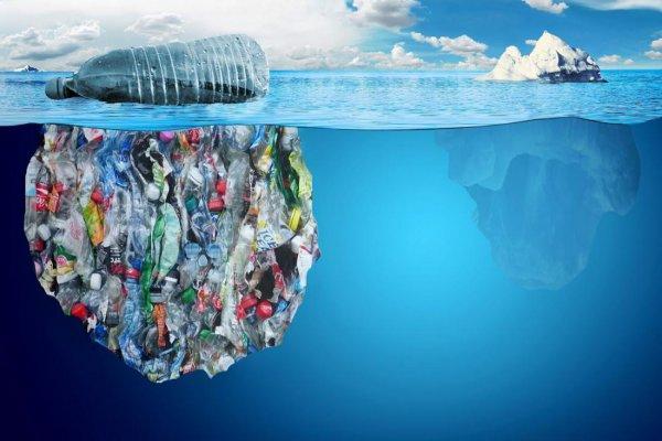 Учёные: Пластиковый мусор уже добрался к Северному полюсу