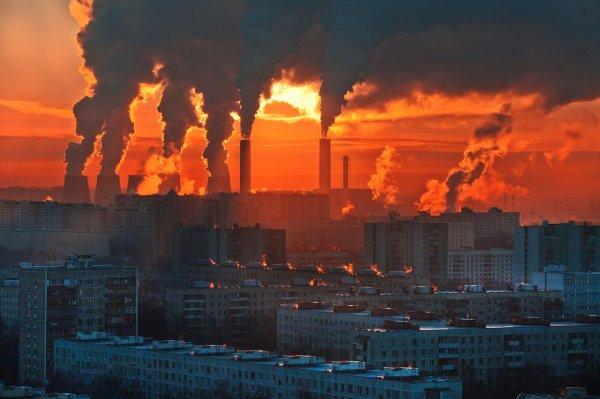 В 2050 году жара в 40 градусов станет нормой: Климатологи сообщили о будущих проблемах Земли