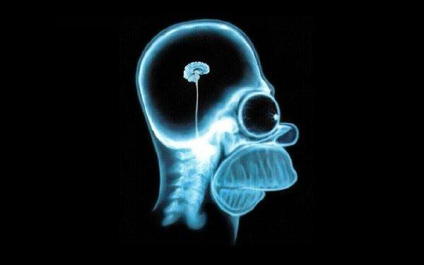 Ученые: В организме человека был обнаружен вирус глупости