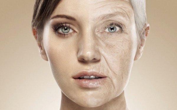 Ученые из США обнаружили ген старения нервных клеток