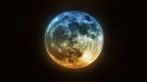 Ученые: На Луне могут быть живые существа