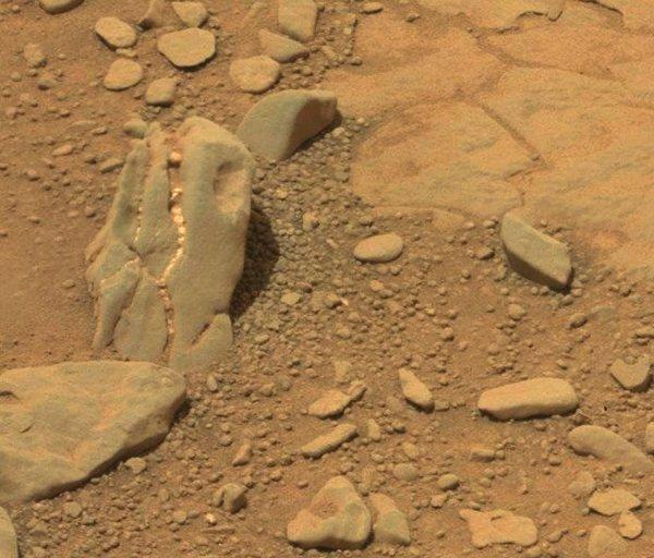 Ученые нашли останки динозавров на Марсе