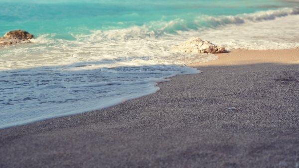 На пляжах Фукусимы выявили мощные источники радиации