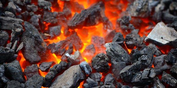 Ученые: Уголь является причиной конца пермского периода