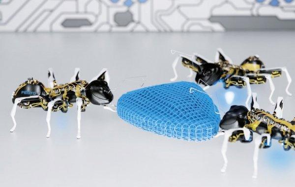 Ученые из РФ научат мини-роботов жить и работать в коллективе