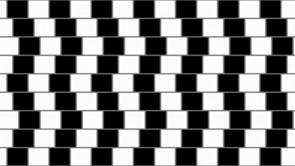 Ученые назвали лучшие оптические иллюзии 2017 года