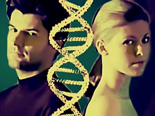 ДНК влияет на расставание людей: О чём узнали учёные?