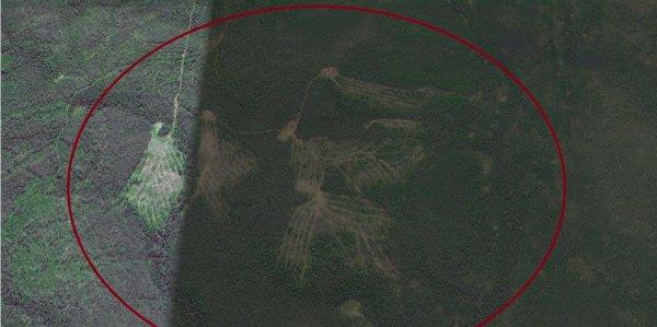 Ученые нашли объяснение появлению «геоглифов» у перевала Дятлова