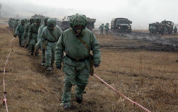 В Приморье ученые создали «морскую» защиту от токсичных металлов