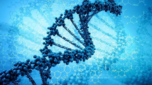 Ученые расшифровали геном человека, что поможет вылечить любую болезнь