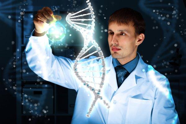 Ученые: Удвоение «мусорной» ДНК сделало из обезьяны человека