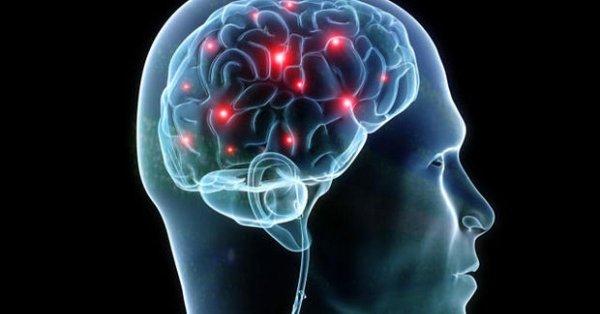 Ученые выяснили, каким образом и почему мозг включает «режим автопилота»