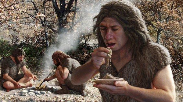Ученые рассказали о заботе неандертальцев о стариках и инвалидах