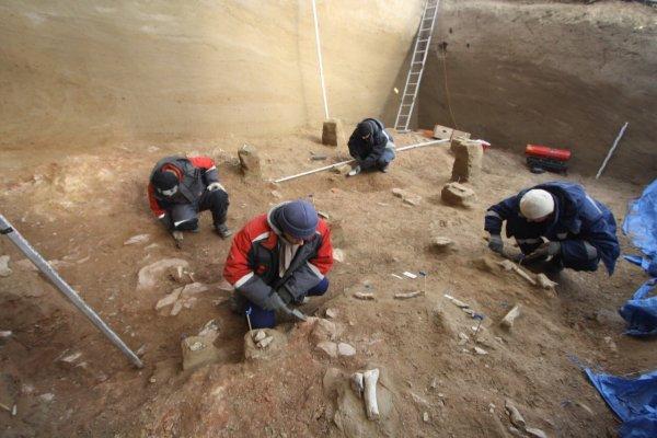 Древнейшая жертва цунами была найдена учеными