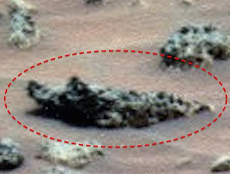 Уфолог Уоринг нашёл на Марсе бутылку и скульптуру крокодила: Ритуальный объект или предмет декора?