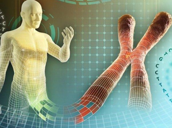 Старение организма необратимо: Что выяснили учёные?