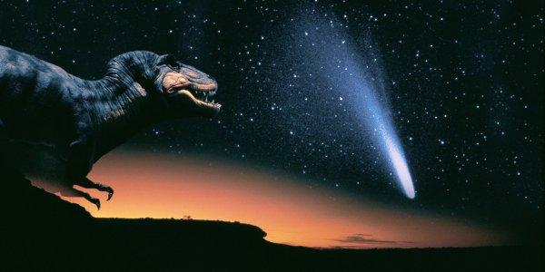 Погубивший динозавров астероид может помочь в лечении онкологии
