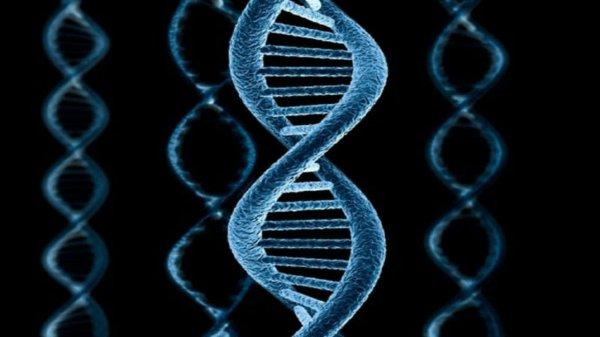 Ученые нашли еще одно «недостающее звено» химии происхождения мира: В этом принимала участие космическая пыль