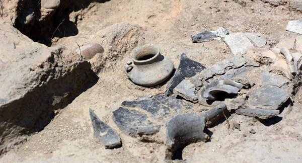 В Грузии нашли древнейшие следы виноделия
