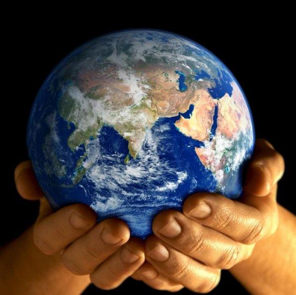 Ученые  подписали второе «Предупреждение человечеству». Почему за четверть века не удалось решить глобальные проблемы современности?