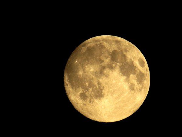 Британские СМИ узнали о намерениях РФ колонизировать Луну