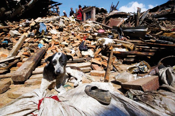 В 2018 году разрушительных землетрясений станет вдвое больше – Ученые
