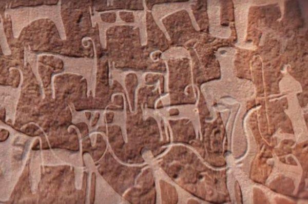 В Саудовской Аравии найдено самое древнее изображение собаки