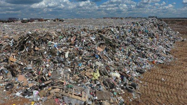 Ученые назвали главный источник выбросов сероводорода в Москве