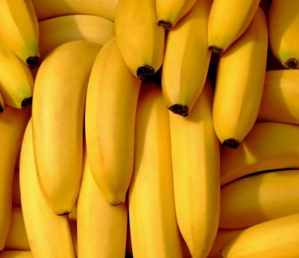 Ученые искусственно создали устойчивый к болезням сорт бананов