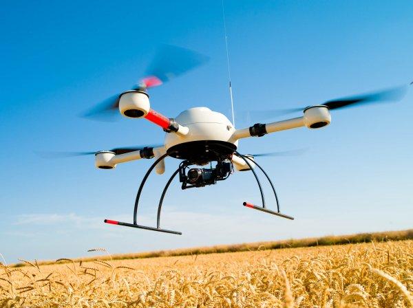 Ученые опубликовали видео будущего с «дронами-убийцами»