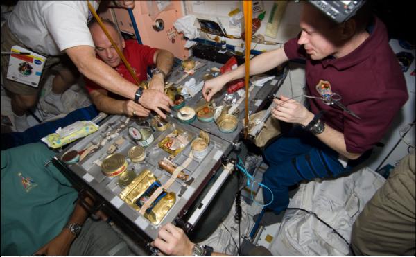 На МКС испытывают гравитацию на мухах-мутантах: Какие эксперименты проходят на орбите?