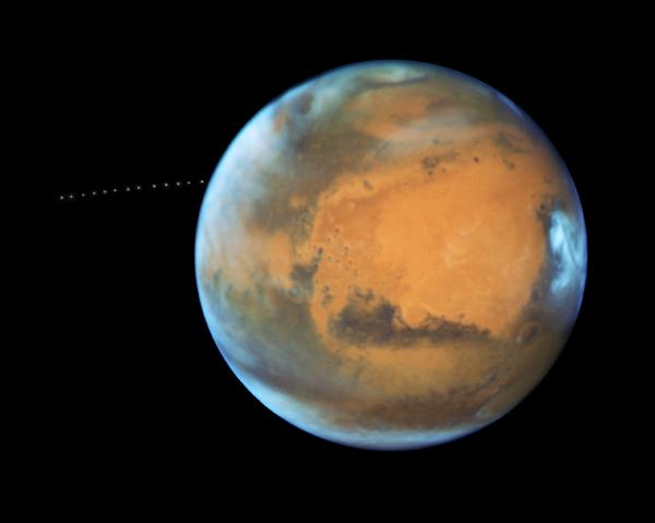 Исследователи выяснили, что черви смогут выжить в почве Марса