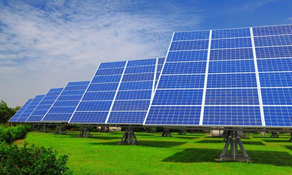 Бактериальные чернила помогли напечатать солнечные батареи на бумаге