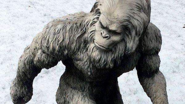 Тайна ДНК снежного человека? раскрыта: Животное или гибрид?
