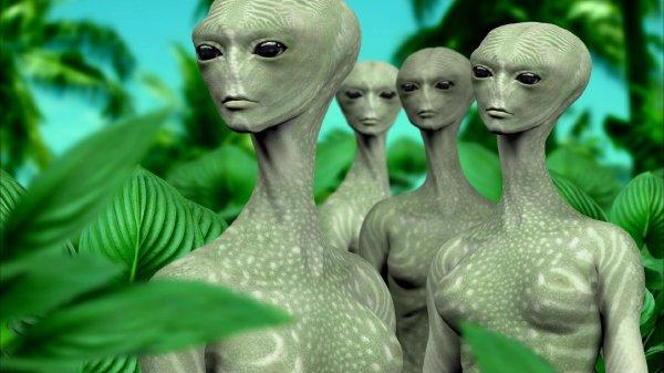 Древние пришельцы не покинули Землю, а погибли на ней — Уфологи