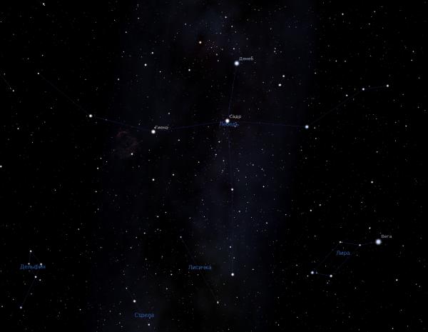 В созвездии Лебедя обитают гуманоиды – Ученые