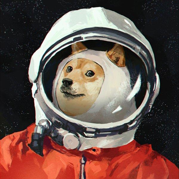 Ученые предрекают печальную участь собакам на Марсе