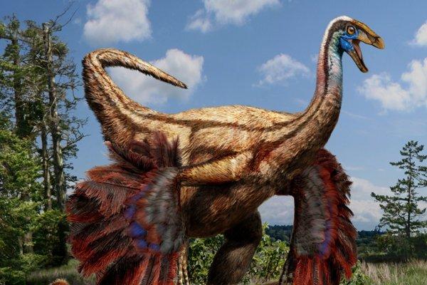 Учёные обнаружили в Монголии останки пернатого динозавра