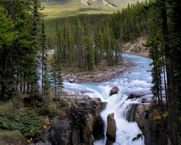 Учёные: Без лесов исчезнет пресная вода