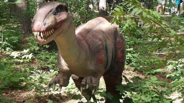 Ученые спорят об останках динозавра с кусками сохранившейся плоти