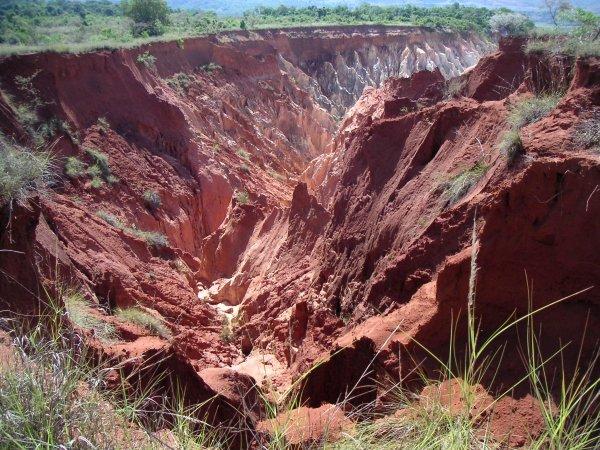 Ученые рассказали о постоянном разрушении тонн почвы