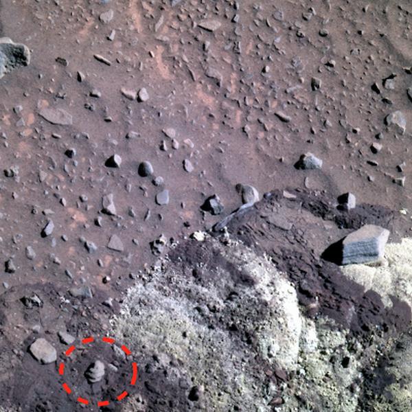 Ученые обнаружили на Марсе древнюю ракушку во влажной почве