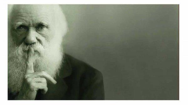 Биологи поставили под сомнение один из выводов Дарвина