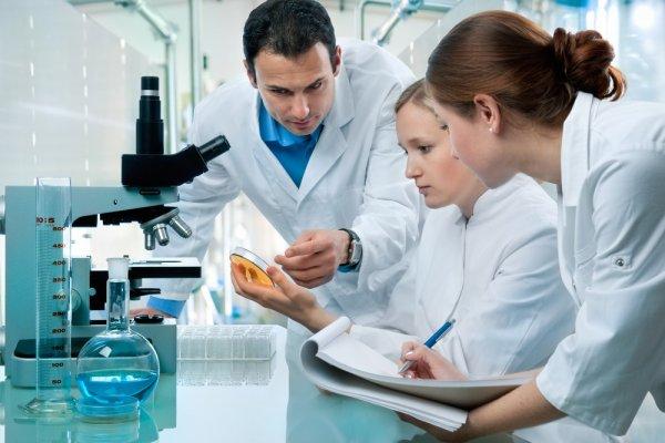 Ученые: Диета продлевает жизнь лишь гермафродитам