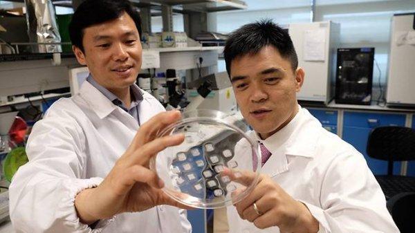 Учёные изобрели пластырь, который доставляет лекарство от ожирения прямо «на место»